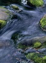 Les consommateurs se rebellent contre le projet de loi sur l'eau. LA CACE FAIT DES PROPOSITIONS