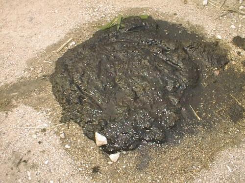 La lettre de S-EAU-S : Eau, énergie, déchets : <FONT COLOR='RED'>la privatisation sur le terrain</font>
