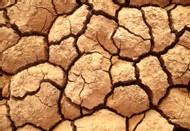 KENYA : LA FAMINE PAR LA CORRUPTION <FONT COLOR='RED' SIZE=4>Nous sommes une Terre assoiffée de promesses vides </FONT>
