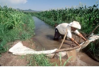 Irrigation au Mexique. De tous les secteurs qui utilisent l'eau douce, c'est l'agriculture qui a la plus faible rentabilité