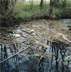 Loi sur l'eau : <font color='red' size=5> Responsabilité d'une commune pour pollution d'un ruisseau due aux rejets des eaux usées</font>