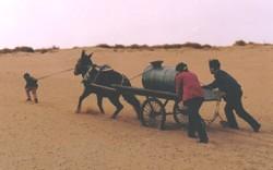 Dans le désert chinois, l'alimentation en eau