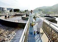 Dossier : Les  fleuves en danger, miroirs du Chemin de la Chine vers la Modernité