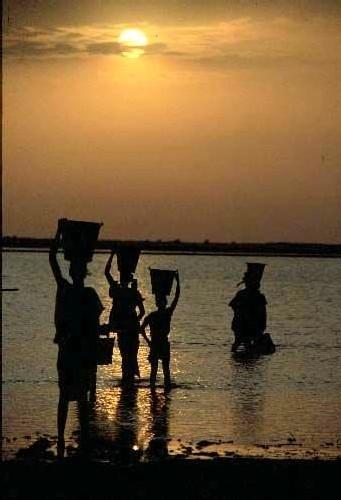 Sénégal : Plus d'un million de personnes boivent une eau dangereuse