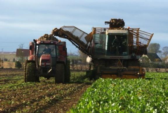Nitrates : la France, une nouvelle fois menacée d'une amende de 28 millions d'euros