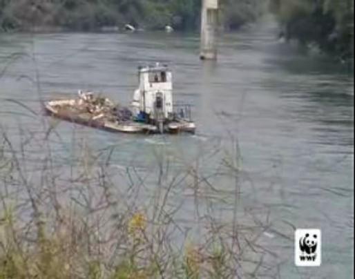 Pollution du Rhône : la video qui accuse