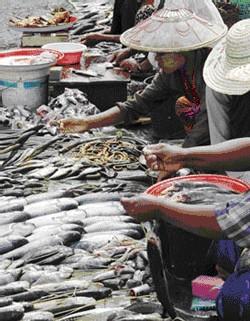 Des vendeurs de poissons attendant des clients près des rives du lac [Photo: AFP]