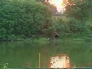 Les rivières françaises toujours autant polluées. 9 points de contrôle sur 10 présentent des pesticides dans les rivières françaises